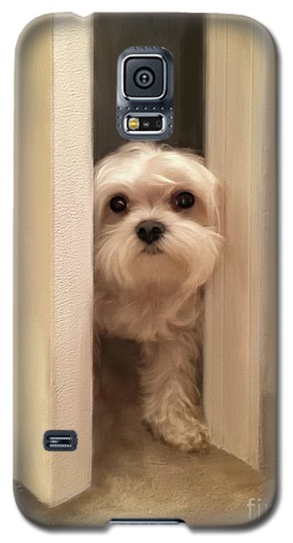 Galaxy S5 Case featuring the photograph Hello by Lois Bryan