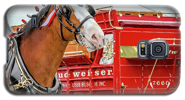 Galaxy S5 Case featuring the photograph Budweiser Clydesdale In Full Dress by Bill Gallagher