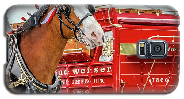 Budweiser Clydesdale In Full Dress Galaxy S5 Case by Bill Gallagher