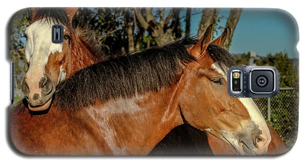 Galaxy S5 Case featuring the photograph Budweiser Clydesdales  by Bill Gallagher