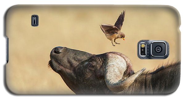 Galaxy S5 Case featuring the photograph Buffalo And Oxpecker Bird by Phyllis Peterson