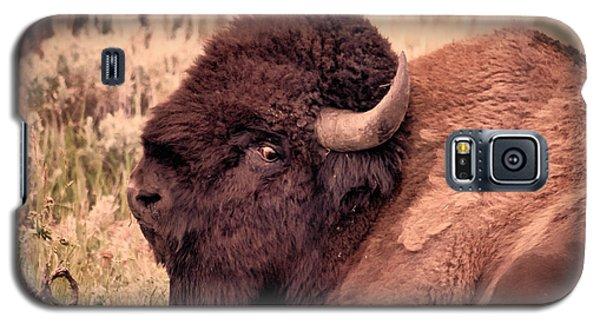 Galaxy S5 Case featuring the photograph Buffalo Eye On You by Janice Rae Pariza