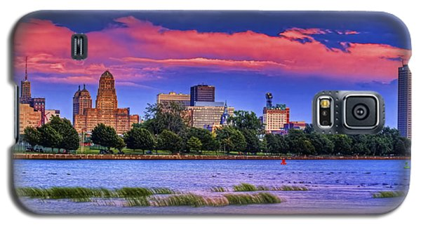 Galaxy S5 Case featuring the photograph Buffalo In Pastels by Don Nieman