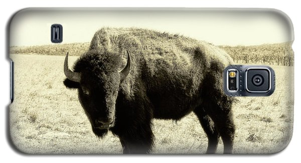 Buffalo In Sepia Galaxy S5 Case