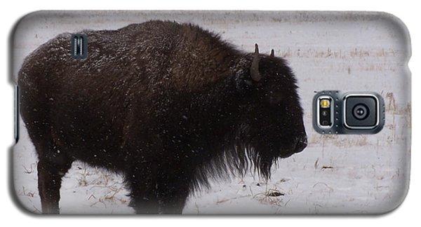 Buffalo Galaxy S5 Case