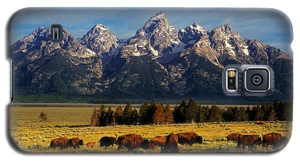 Buffalo Under Tetons Galaxy S5 Case
