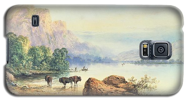 Buffalo Watering Galaxy S5 Case