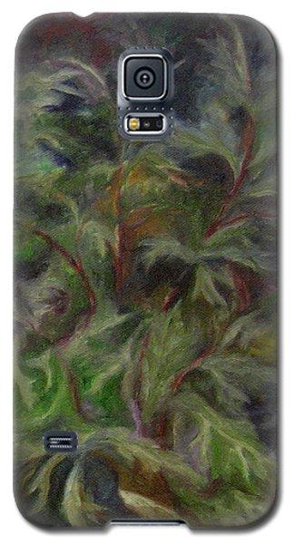 Bugbane Galaxy S5 Case