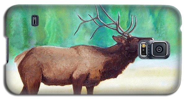 Bugling Elk Galaxy S5 Case
