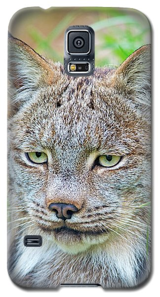 Galaxy S5 Case featuring the photograph Built In Hearing Aid.. by Nina Stavlund