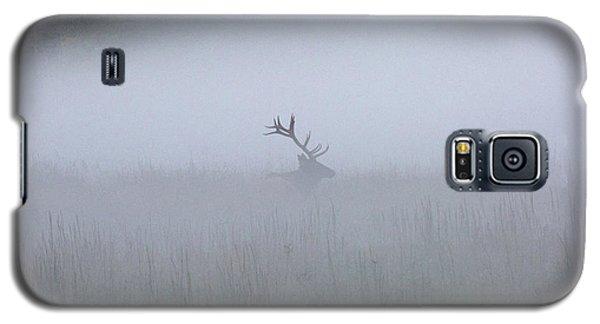 Bull Elk In Fog - September 30, 2016 Galaxy S5 Case