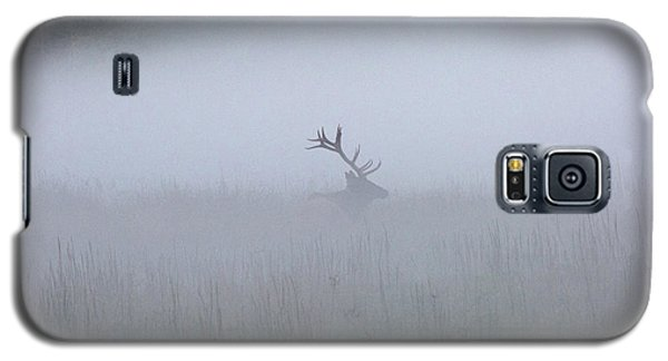 Bull Elk In Fog - September 30, 2016 Galaxy S5 Case