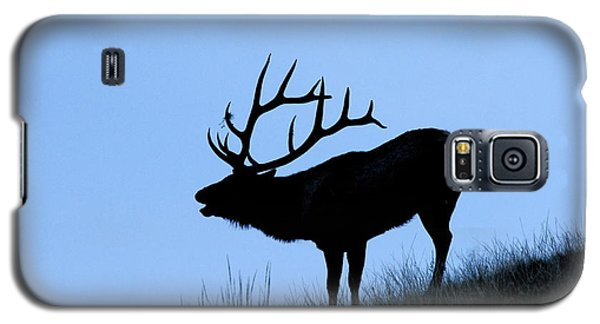 Bull Elk Silhouette Galaxy S5 Case by Larry Ricker