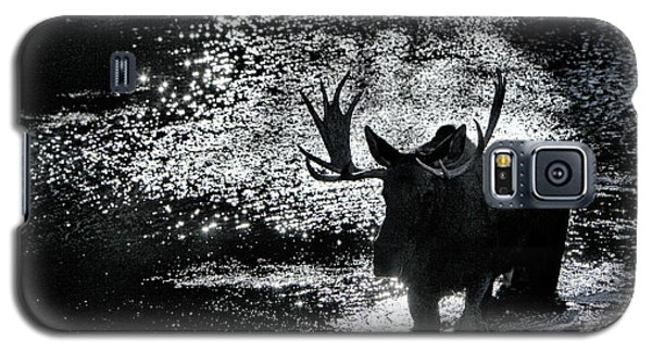 Bull Moose Shadow Galaxy S5 Case