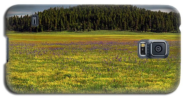 Galaxy S5 Case featuring the photograph Bull Prairie by Leland D Howard