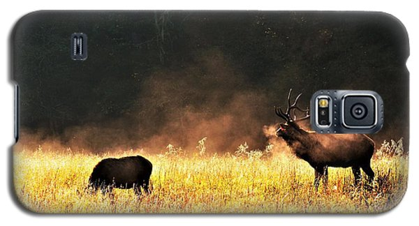 Bull With His Girl Galaxy S5 Case