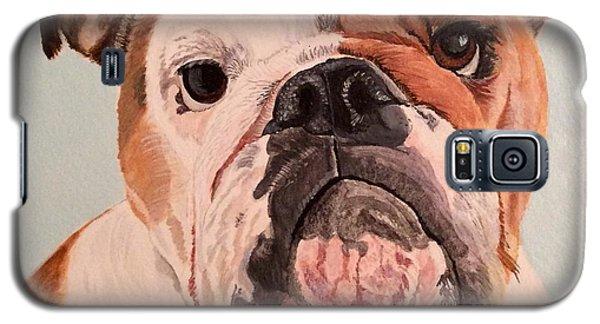 Bulldog Beauty Galaxy S5 Case