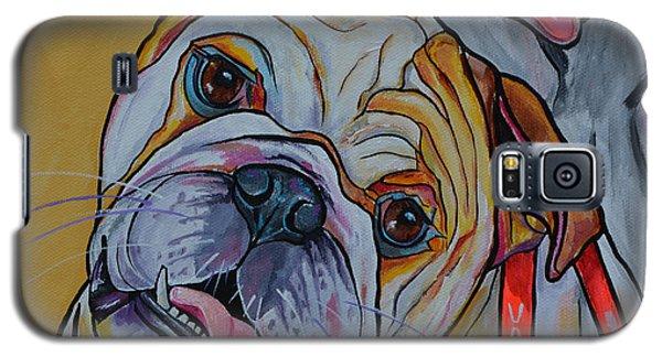 Bulldog Galaxy S5 Case by Patti Schermerhorn