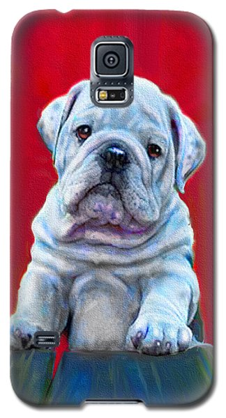 Bulldog Puppy On Red Galaxy S5 Case by Jane Schnetlage