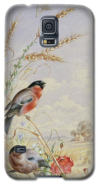 Bullfinches In A Harvest Field Galaxy S5 Case