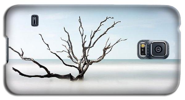 Bull Galaxy S5 Case - Bulls Island C-ii by Ivo Kerssemakers