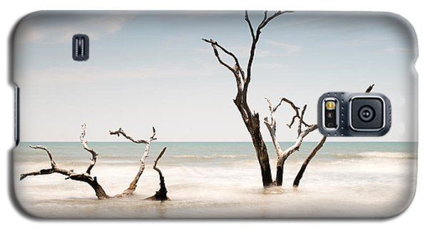 Bull Galaxy S5 Case - Bulls Island C-v by Ivo Kerssemakers