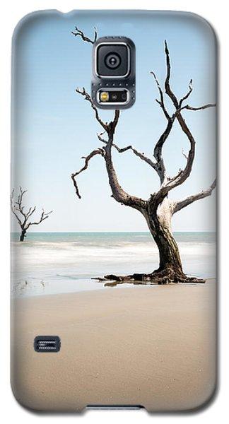 Bull Galaxy S5 Case - Bulls Island C-x by Ivo Kerssemakers