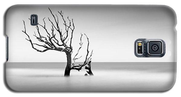Bull Galaxy S5 Case - Boneyard Beach  Xiv by Ivo Kerssemakers