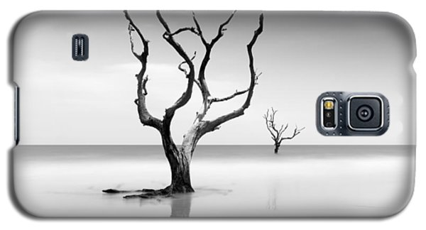 Bull Galaxy S5 Case - Boneyard Beach Xv by Ivo Kerssemakers