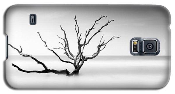 Bull Galaxy S5 Case - Boneyard Beach Vi by Ivo Kerssemakers