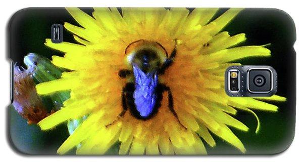 Galaxy S5 Case featuring the photograph Bullseye Bumblebee Dandelion by Rockin Docks Deluxephotos