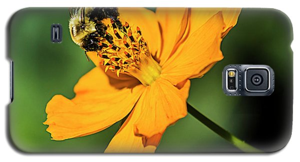 Bumble Bee And Flower Galaxy S5 Case