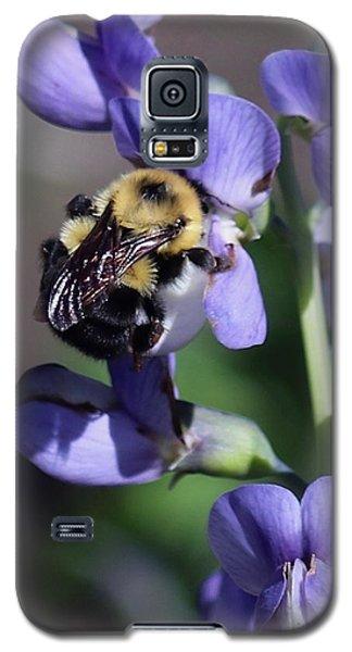 Bumble Bee, Blue Indigo Galaxy S5 Case