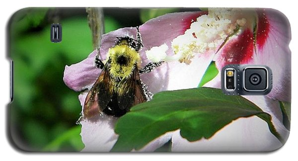 Bumble Bee Gathering Pollen Galaxy S5 Case