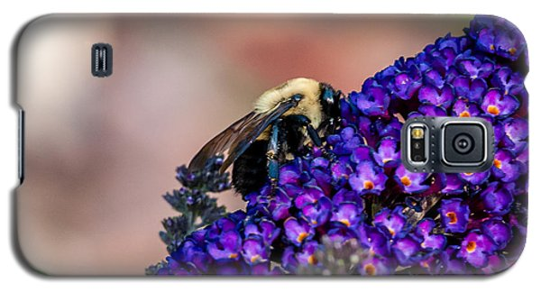 Bumble Bee Galaxy S5 Case