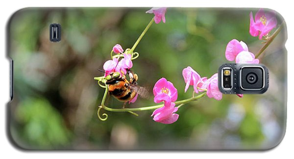 Bumble Bee2 Galaxy S5 Case