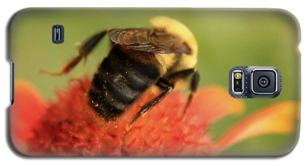 Galaxy S5 Case featuring the photograph Bumblebee by Chris Berry