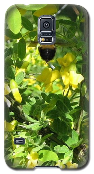 Galaxy S5 Case featuring the photograph Bumblebee In Flight In Yellow Flowers by Barbara Yearty