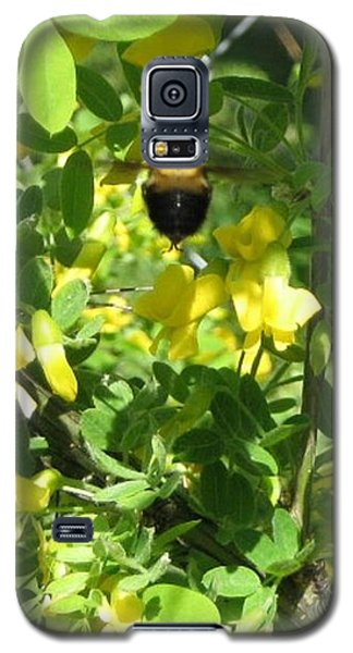 Bumblebee In Flight In Yellow Flowers Galaxy S5 Case