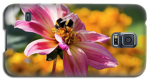 Bumblebee On Orange Galaxy S5 Case
