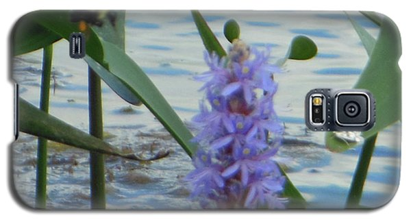 Galaxy S5 Case featuring the photograph Bumblebee Pickerelweed Moth by Rockin Docks Deluxephotos