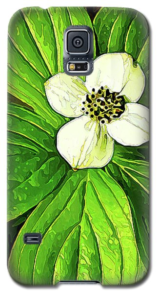 Bunchberry Blossom Galaxy S5 Case
