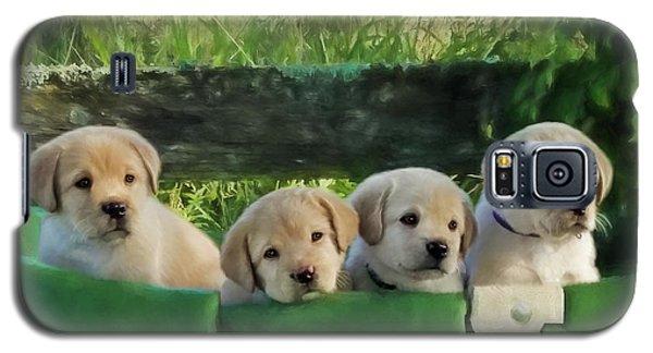 Bundles Of Joy - Labrador Art Galaxy S5 Case