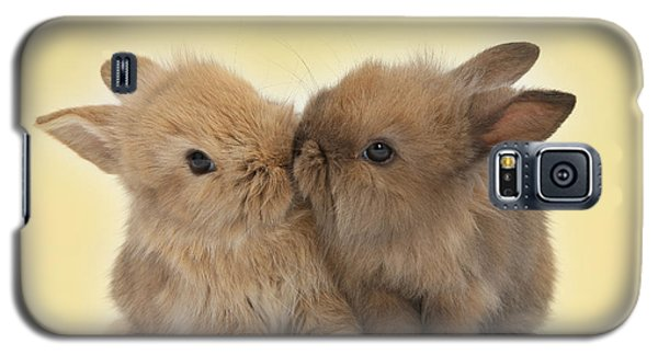 Bunny Kisses Galaxy S5 Case