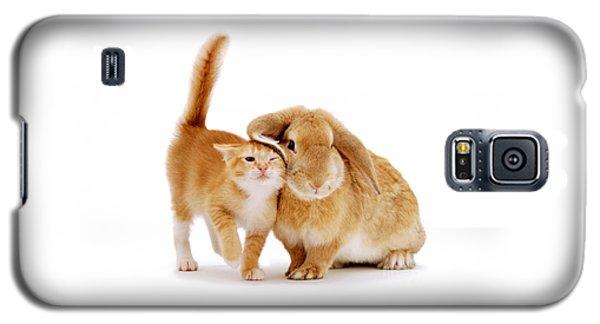 Bunny Rubbing Galaxy S5 Case