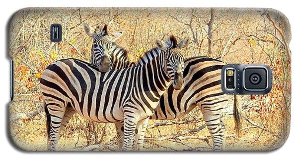 Burchells Zebras Galaxy S5 Case