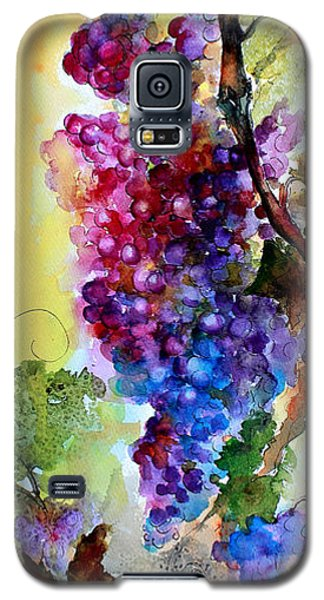 Wine Grapes Burgundy In Sunlight Galaxy S5 Case