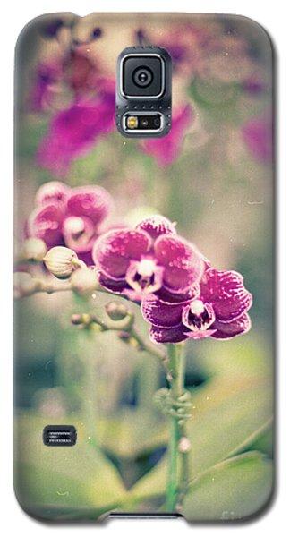 Burgundy Orchids Galaxy S5 Case by Ana V Ramirez