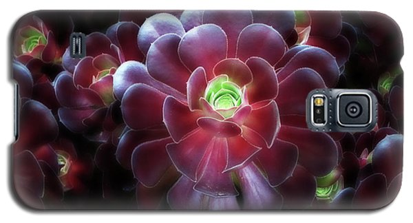 Burgundy Succulenta Galaxy S5 Case