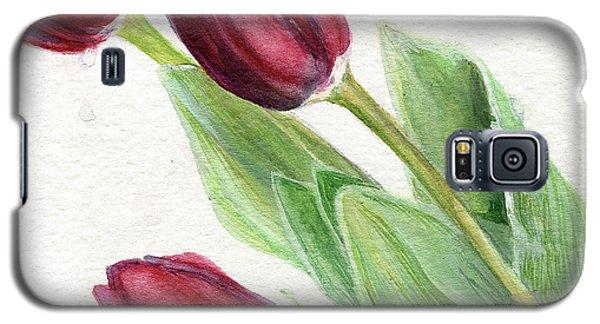 Burgundy Tulips Galaxy S5 Case